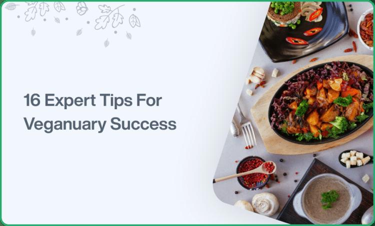 16 Expert Tips For Veganuary Success