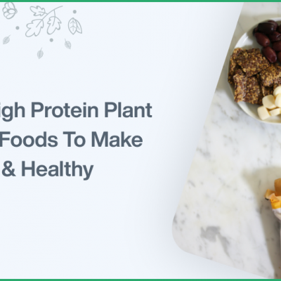 Best High Protein Plant Based Foods To Make You Fit Healthy