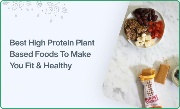 Best High Protein Plant-based Foods to Make You Fit & Healthy